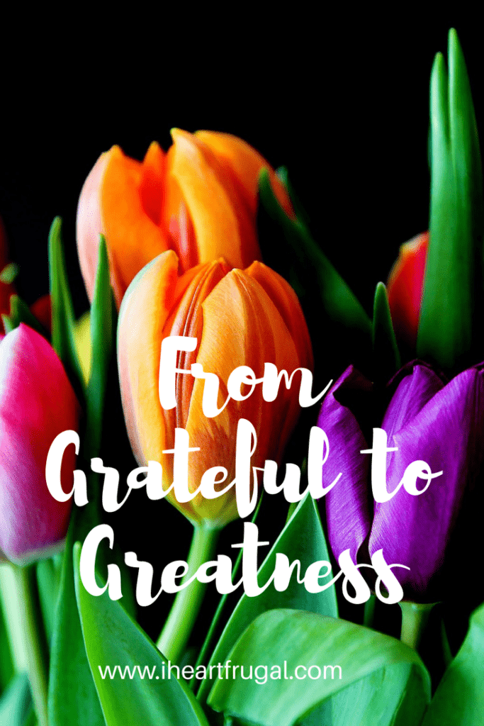 From Grateful to Greatness- A new series about how gratitude can change your life.