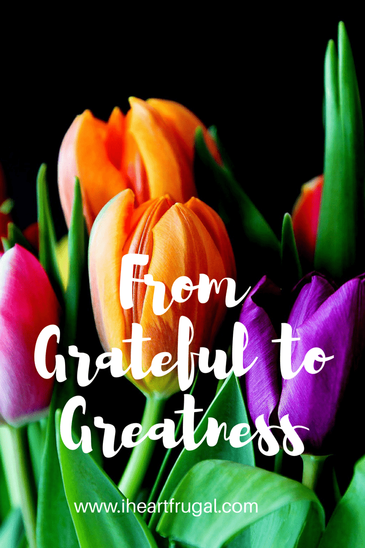From Grateful to Greatness