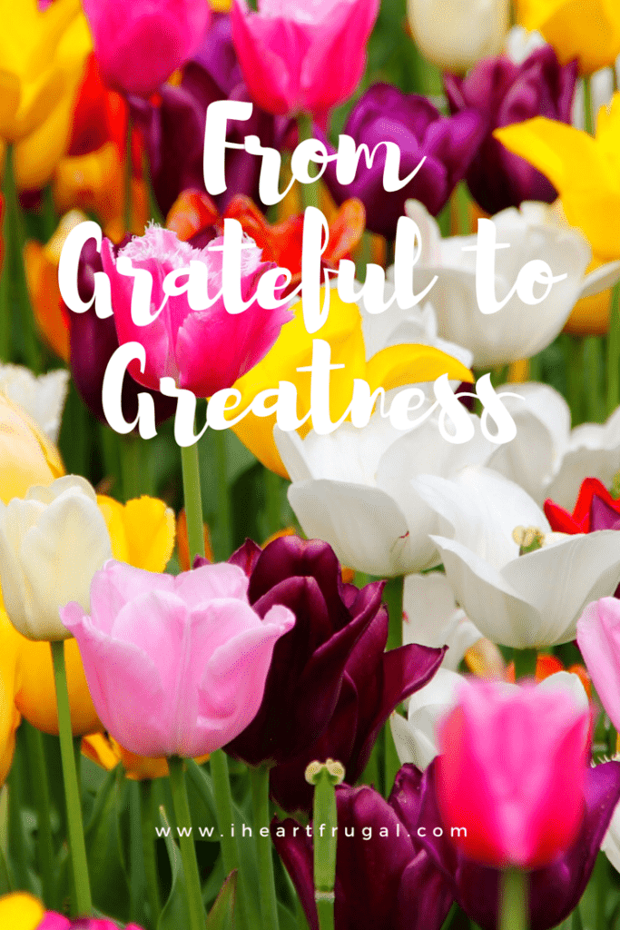 From Grateful to Greatness - Learn how showing gratitude can make your life great!